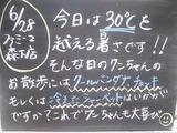 2011/6/28森下