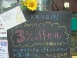 2011/8/4立石