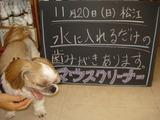 2011/11/20松江