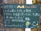 9月3日松江店