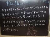081016松江
