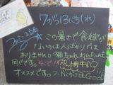 2011/7/13立石