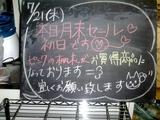 2011/7/21森下