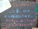 2012/8/29立石
