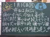 060116南行徳
