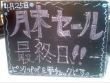 2010/4/25森下