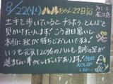 060822松江