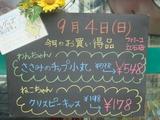 2011/9/4立石