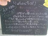 2010/04/06立石