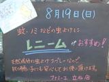 2012/08/19立石
