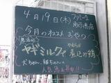 2012/4/19南行徳