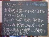 081101南行徳
