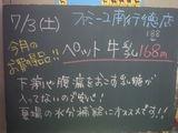 2010/07/03南行徳