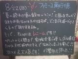 2010/8/22南行徳
