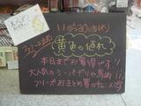 2011/11/30立石