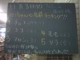 091103南行徳