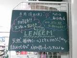 2011/8/18南行徳