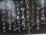2010/03/23森下