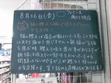 2011/8/26南行徳