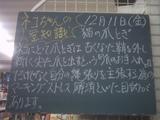 091211南行徳