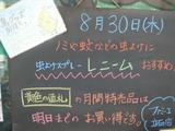 2012/8/30立石