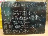 2010/10/30葛西