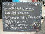 2011/8/16森下