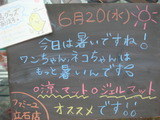 2012/6/20立石