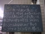 081015南行徳
