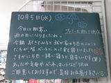 2011/10/5南行徳