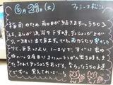 080621松江