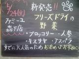 2011/5/24森下