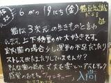 090619松江