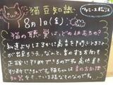 080801松江