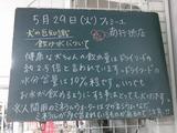 2012/5/29南行徳