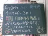 2011/6/28南行徳