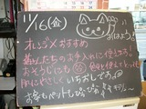 2012/11/16森下