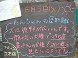 2012/6/5立石
