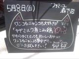 2011/05/08森下