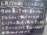 2011/6/29森下