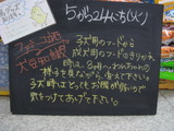 2011/5/24立石