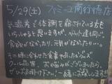2010/05/29南行徳