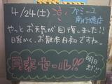 2010/04/24南行徳