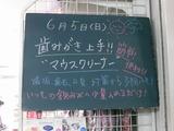 2011/06/05南行徳