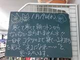 2011/1/19南行徳