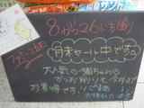 2011/8/26立石