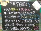 2010/3/7立石