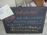 2011/8/23立石