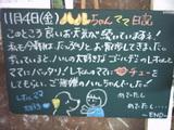 051104松江
