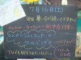 2011/07/16立石